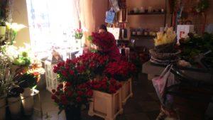 Poznaj nasze kwiaciarnie : Kwiaciarnia Brodnica