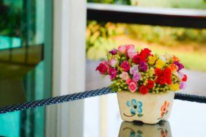 Kwiaty doniczkowe – czy są dobrym pomysłem na prezent?