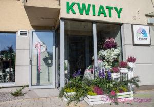 Poznaj nasze kwiaciarnie : Kwiaciarnia Rzeszów