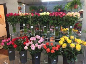 Poznaj nasze kwiaciarnie : Kwiaciarnia Płock