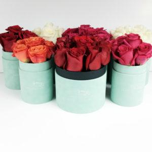 Flowerbox – nowość w ofercie