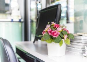 Piękne kwiaty przez internet z dostawą